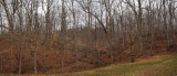 Panorama -  Trail at Blockhouse cliff park