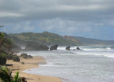 Coastline of Bathsheba