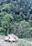 Remote Batak house