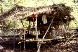 Shelter in forest 'campo'