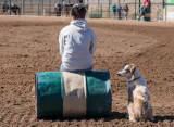 Barrel setters set up the barrel when it is knocked down by a horse or when the arena is dragged by the tractor