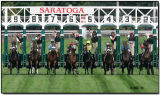 Starting Gate - 6th Race