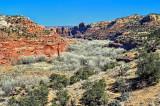 Near the Bryce Canyon NP