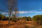 Wilton Preserve in HDRNovember 10, 2012