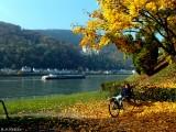 Goldener Oktober..