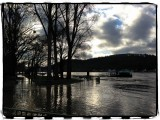 Flooding at the Rhine River