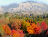 Mt Diablo ICM_twirl_3.jpg