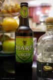2013 first bottle - Harp Premium Lager