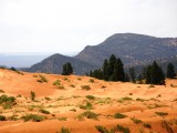 Orange sandwaves