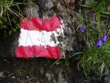 Trail mark with flowers