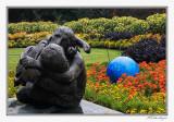 IMG_6356-Jonsson Garden.jpg