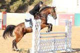 arabian_horse_club