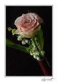 Rose et muguet.jpg