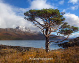 Slioch Light