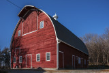 This is one of the barns on the Iowa Barn Tour and is a beauty. Built in 1927 it is 36' wide, 56' long and 38' at it's peak and features a gothic roofline.