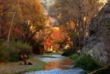 Aravaipa Canyon Fall Colors