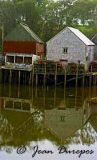 Seal Cove Wharf