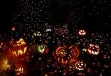 Roger Williams Park 10,000 pumpkins on display