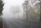 Road disappearing in fog