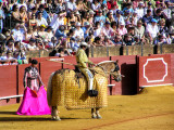 2005 ☆ Andalusia ☆ Sevilla (Spain)