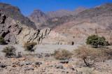 2012 Wadi Bani Auf (Oman)