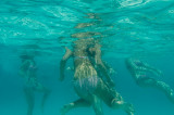 2012 Snorkeling at Blue Lagoon (Malta)