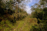 Royal Chitwan NP