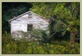 08.26.06 Abandoned