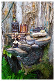 A humble fairy abode