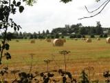 133 brown's hill carlow Ireland 18.jpg