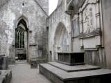 349 muckross abbey.jpg