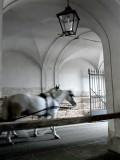 493 Hofburg Palace.JPG