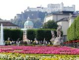 833 Salzburg.jpg
