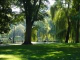 416 Pubic Garden.jpg
