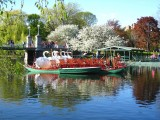 424 Boston Pubic Garden.jpg