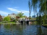 425 Boston Pubic Garden.jpg