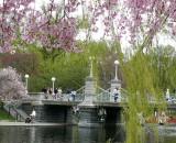 431 garden.jpg