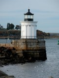 132 bug light.jpg