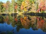 271 265 Conway 08 beaver pond 1.jpg
