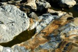 285 230 Shelburn Falls Potholes.jpg