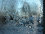 285 frost 4.JPG