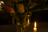 Candle's Light