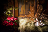 Christmas Crib At St. Martin's Church
