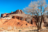 Capitol Reef NP - The Castle