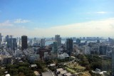 A view from Tokyo tower