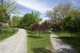 Spring path @f9.5 D700