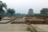 at Sarnath M8