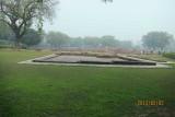 Deer park in Sarnath