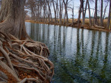 Drought 20 - Winter 2012-2013