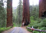 National Parks of Western USA - 2011